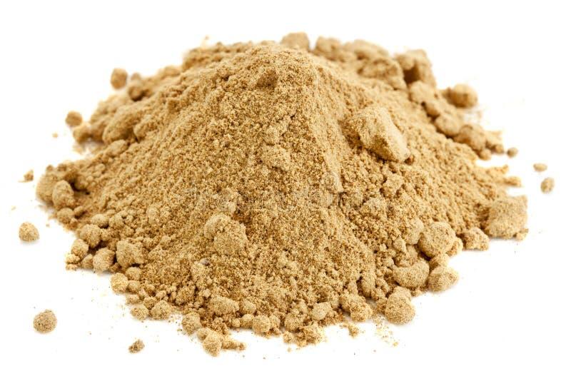σκόνη καρπού camu στοκ φωτογραφία με δικαίωμα ελεύθερης χρήσης
