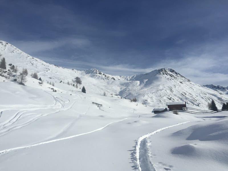 Σκόνη χιονιού στοκ φωτογραφία με δικαίωμα ελεύθερης χρήσης