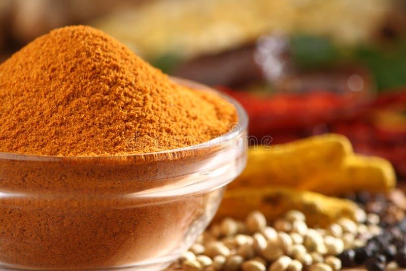 σκόνη sambar στοκ φωτογραφία