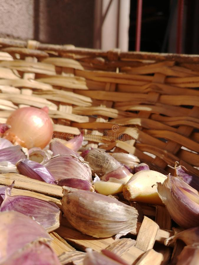 Σκόρδο και κρεμμύδια στοκ εικόνες με δικαίωμα ελεύθερης χρήσης