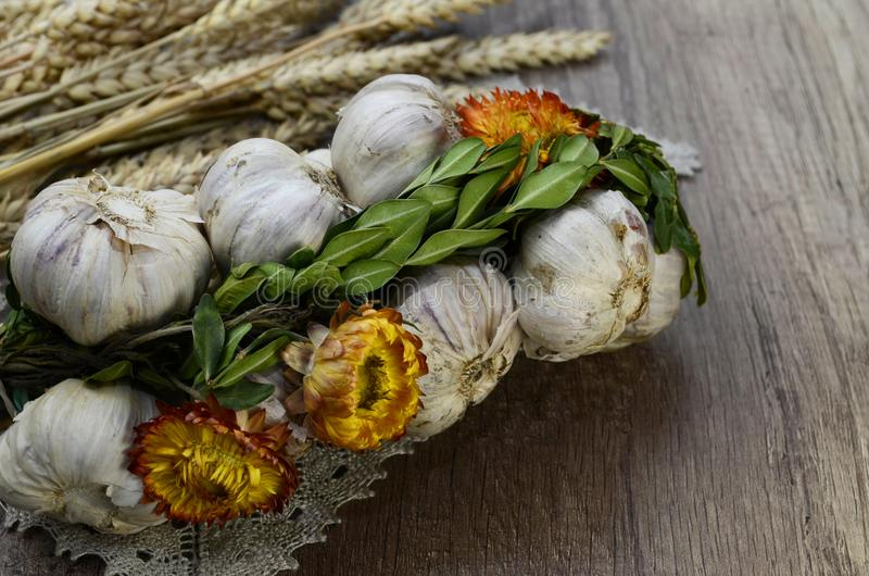 Σκόρδο με τα λουλούδια στοκ εικόνα