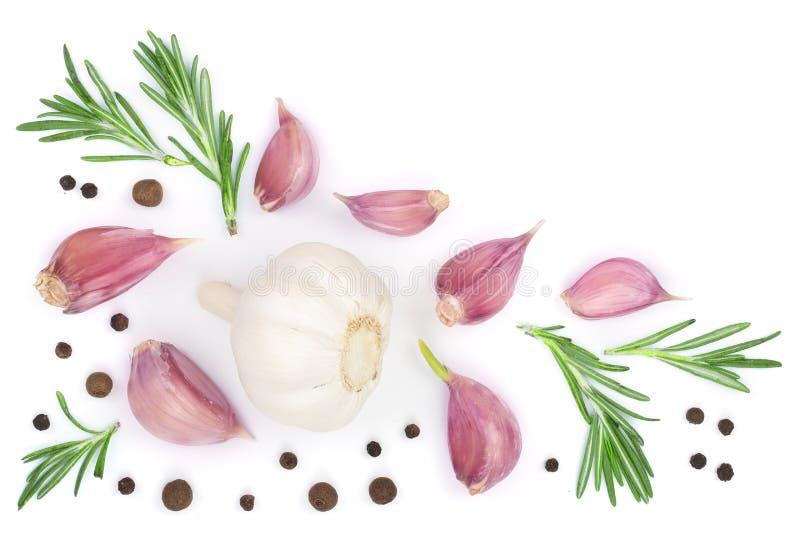 Σκόρδο με το δεντρολίβανο και peppercorn που απομονώνεται στο άσπρο υπόβαθρο με το διάστημα αντιγράφων για το κείμενό σας Τοπ όψη απεικόνιση αποθεμάτων