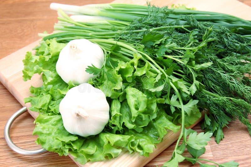 Σκόρδο, πράσινα και κρεμμύδι στην ινόπλακα στοκ φωτογραφίες με δικαίωμα ελεύθερης χρήσης