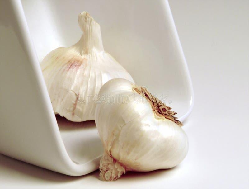 Download σκόρδο στοκ εικόνες. εικόνα από θεραπεία, φρέσκος, seasoner - 102620