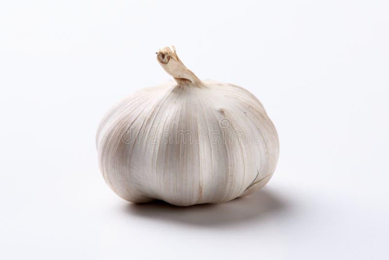 Σκόρδο στο άσπρο υπόβαθρο στοκ φωτογραφία με δικαίωμα ελεύθερης χρήσης