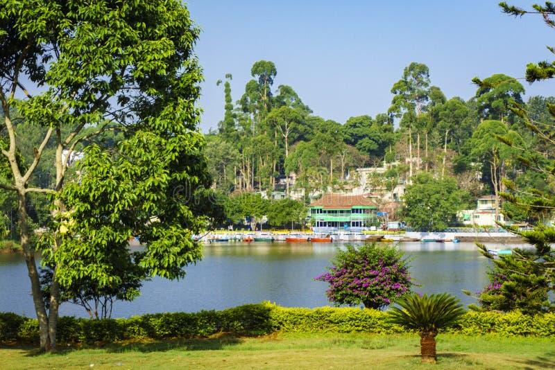 Σμαραγδένια λίμνη που περιβάλλεται από τα δέντρα, Yercaud στοκ φωτογραφία