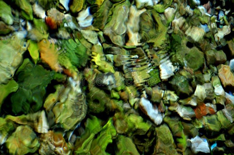 Σμαραγδένιο κύμα στοκ φωτογραφία