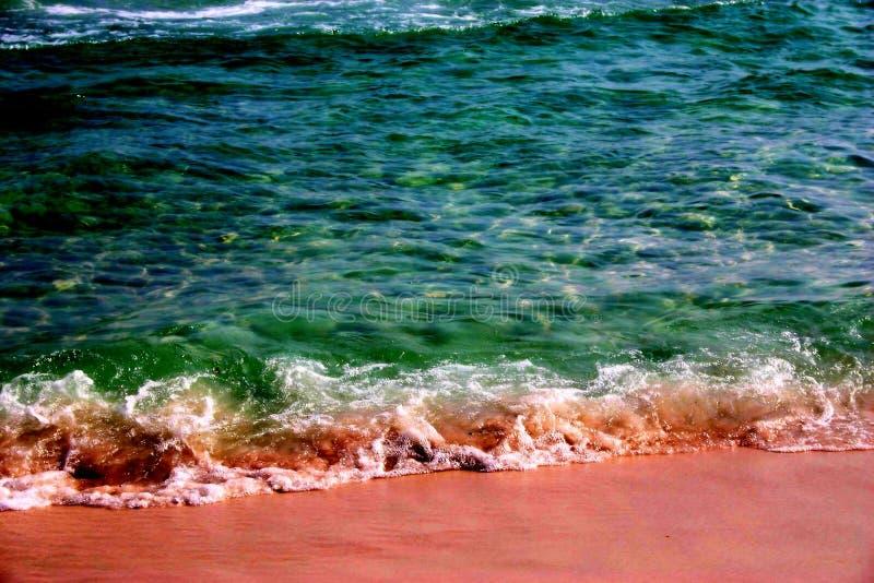 σμαραγδένιο πράσινο ύδωρ παραλιών στοκ φωτογραφία με δικαίωμα ελεύθερης χρήσης