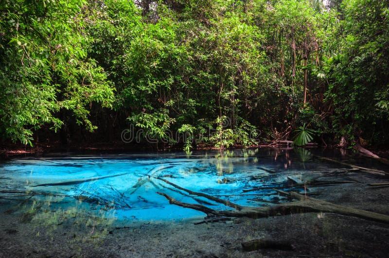 Σμαραγδένια μπλε λίμνη στην επαρχία Krabi, Ταϊλάνδη στοκ εικόνες με δικαίωμα ελεύθερης χρήσης