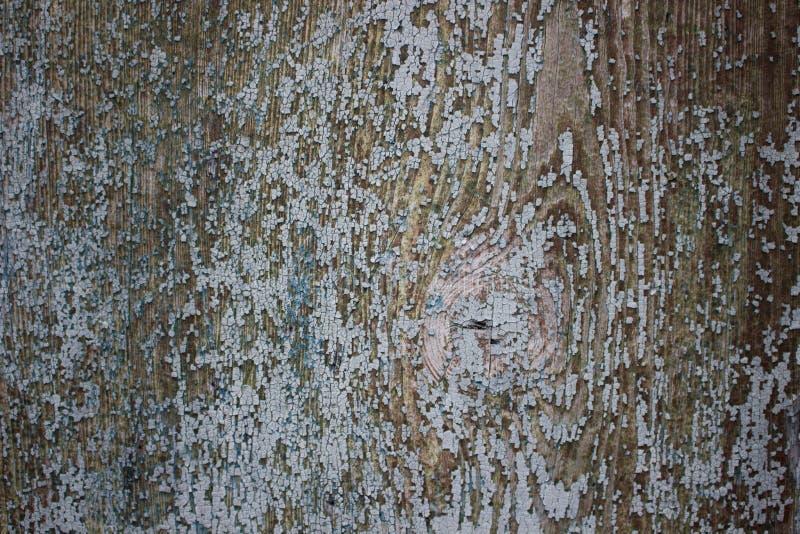 Σμαλτωμένο ξύλο στοκ φωτογραφίες