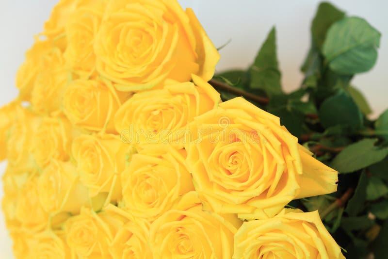Σοβαρή ανθοδέσμη των λουλουδιών για τις όμορφες κυρίες, δέσμη των τριαντάφυλλων στοκ φωτογραφία με δικαίωμα ελεύθερης χρήσης