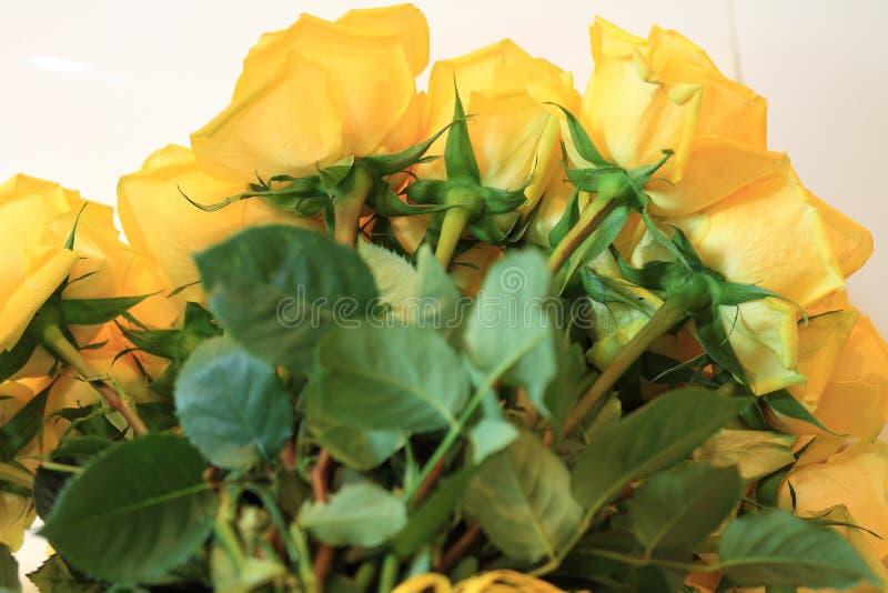 Σοβαρή ανθοδέσμη των λουλουδιών για τις όμορφες κυρίες, δέσμη των τριαντάφυλλων στοκ εικόνες με δικαίωμα ελεύθερης χρήσης
