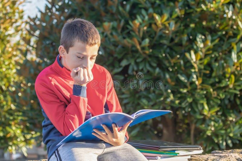 Σοβαρός έφηβος με τα εγχειρίδια και τα σημειωματάρια που κάνουν την εργασία και που προετοιμάζονται για το διαγωνισμό στο πάρκο στοκ εικόνα