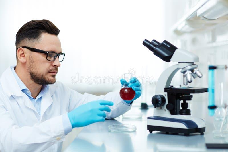 Σοβαρός επιστήμονας που εκτελεί τη ιατρική έρευνα στο εργαστήριο στοκ φωτογραφίες