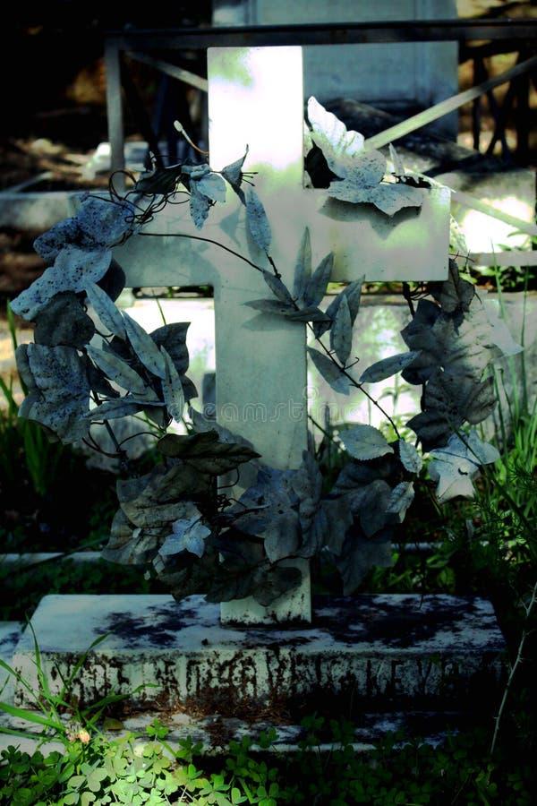 Σοβαρός διαγώνιος τρύγος τάφων στο νεκροταφείο στοκ εικόνα με δικαίωμα ελεύθερης χρήσης