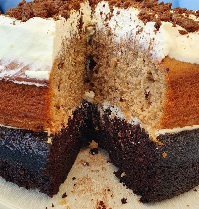 Σοκολάτα και κέικ καπουτσίνο που κόπηκαν στοκ φωτογραφία με δικαίωμα ελεύθερης χρήσης