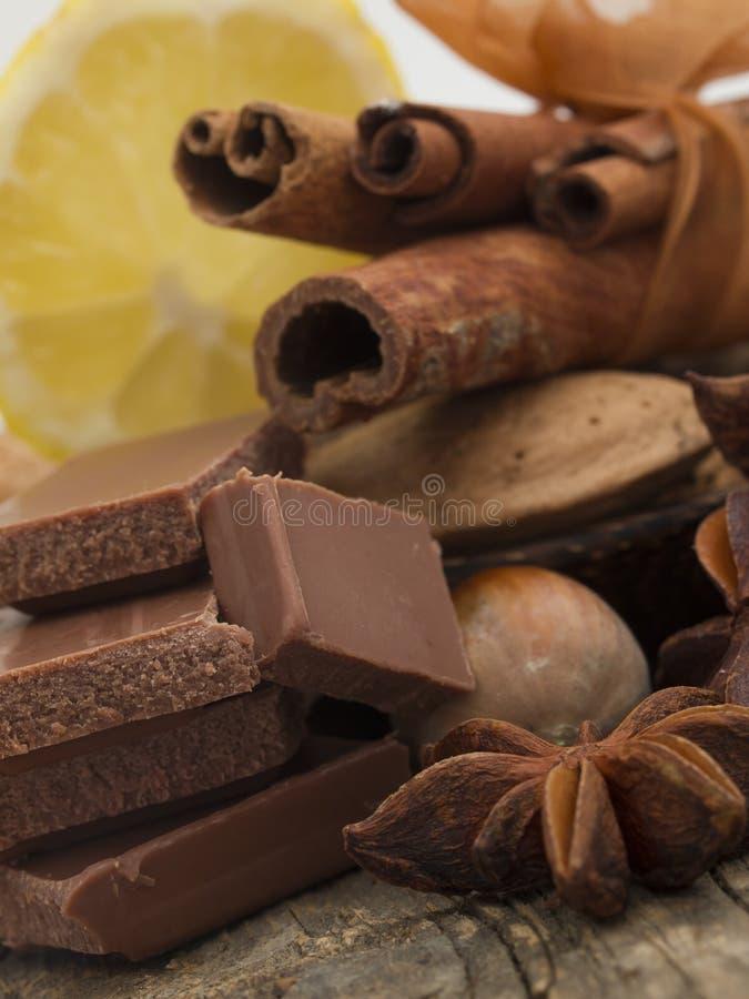Σοκολάτα με την κανέλα και τα καρύδια στοκ φωτογραφίες με δικαίωμα ελεύθερης χρήσης