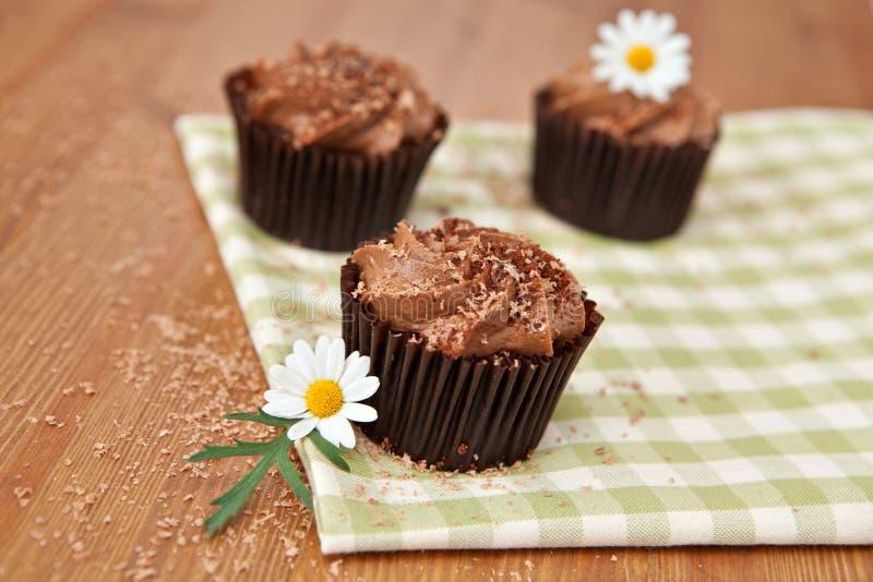 Σοκολάτα cupcakes στοκ εικόνα με δικαίωμα ελεύθερης χρήσης