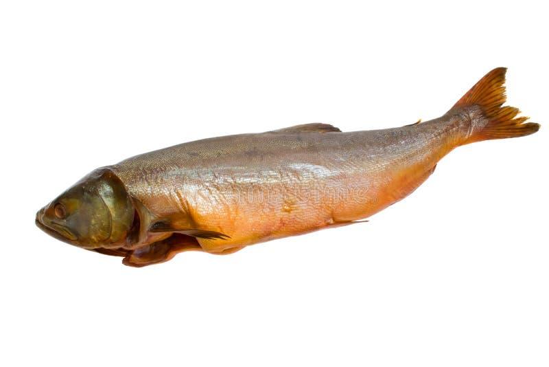 σολομός ψαριών που καπνίζ&e στοκ φωτογραφίες