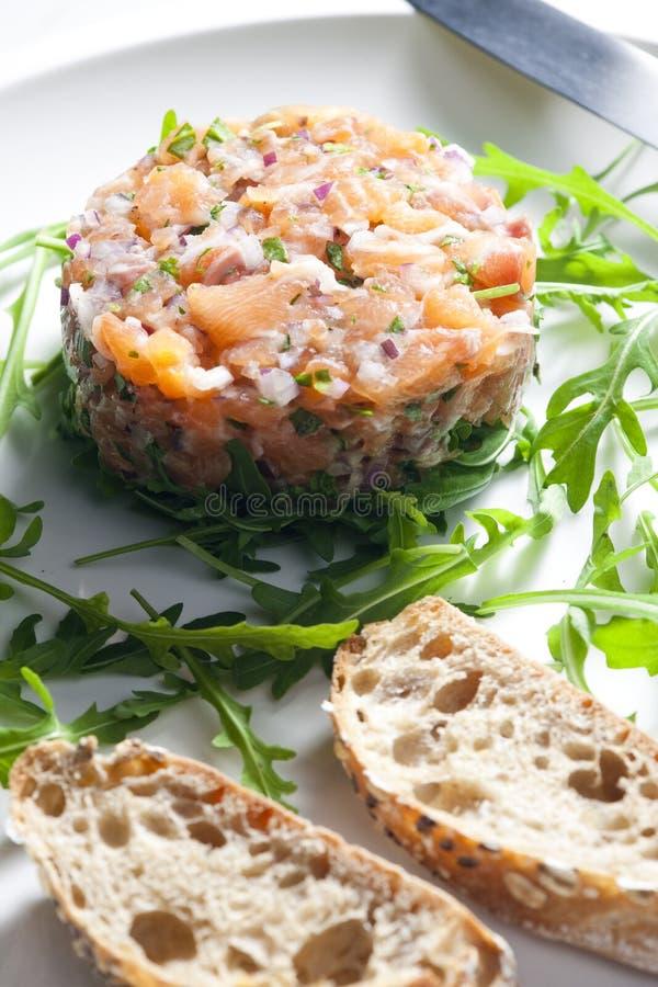 σολομός tartare στοκ φωτογραφία με δικαίωμα ελεύθερης χρήσης