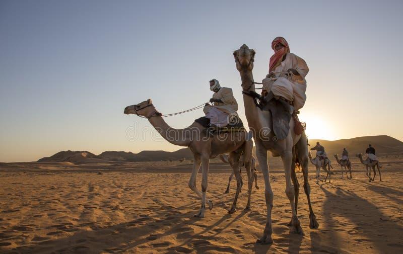Σουδανέζικα άτομα με τις καμήλες τους στοκ εικόνες με δικαίωμα ελεύθερης χρήσης