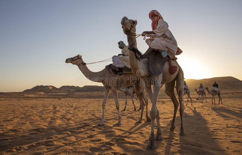 Σουδανέζικα άτομα με τις καμήλες τους στοκ φωτογραφία με δικαίωμα ελεύθερης χρήσης