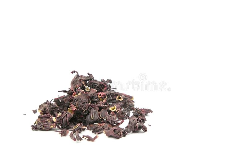Σουδανέζικα αυξήθηκε, karkade, hibiscus στοκ εικόνα