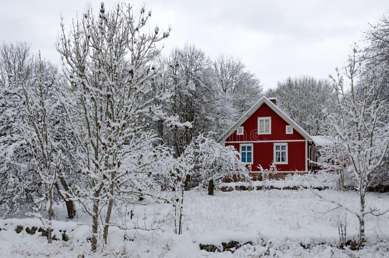 Σουηδικές χειμερινές αντιθέσεις στοκ εικόνες με δικαίωμα ελεύθερης χρήσης