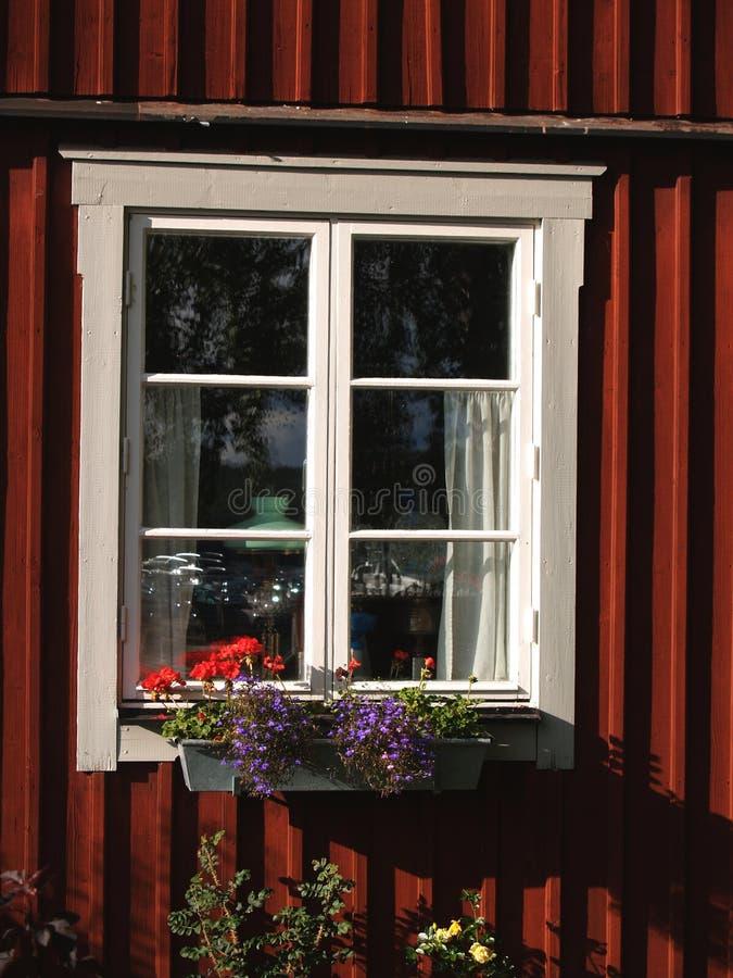 Σουηδικό παράθυρο που πιάνει τον πρόσφατο ήλιο το καλοκαίρι στοκ φωτογραφίες με δικαίωμα ελεύθερης χρήσης