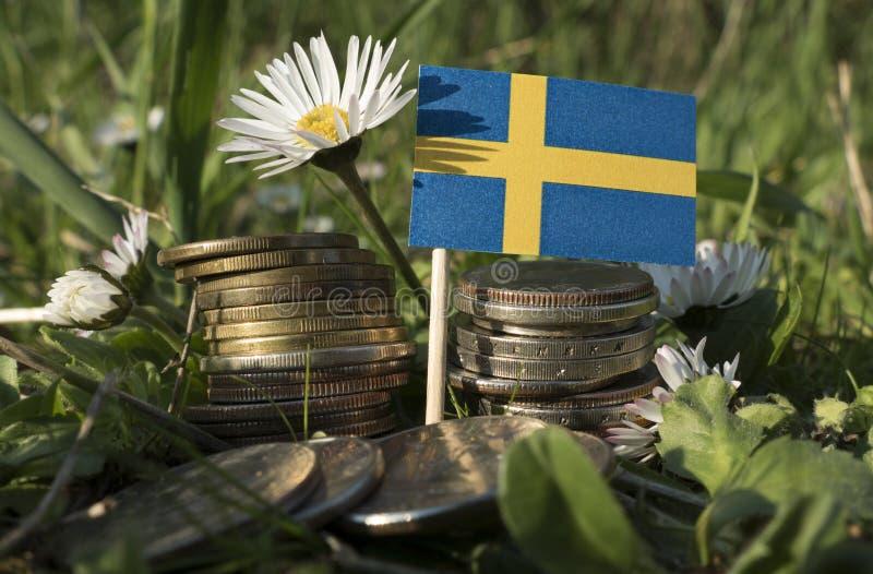 Σουηδική σημαία με το σωρό των νομισμάτων χρημάτων με τη χλόη στοκ φωτογραφία