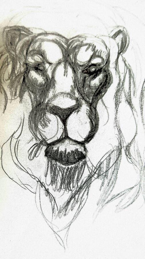 Σοφό λιοντάρι στοκ εικόνα με δικαίωμα ελεύθερης χρήσης