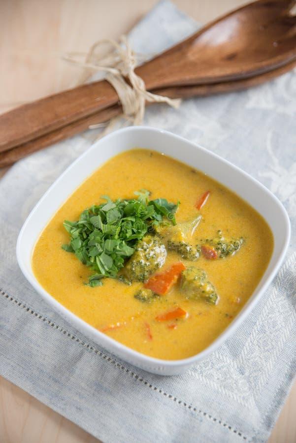 Σούπα κάρρυ καρύδων στοκ εικόνες