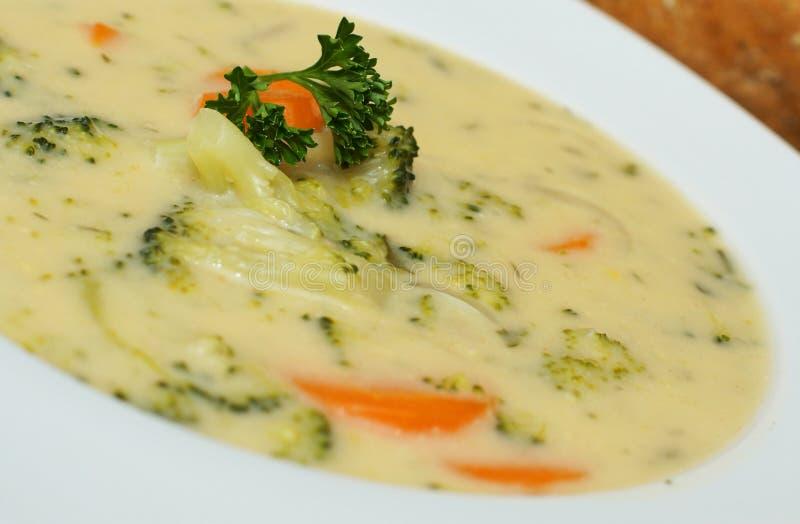 Σούπα κρέμας μπρόκολου με τα καρότα και το μαϊντανό στοκ εικόνα