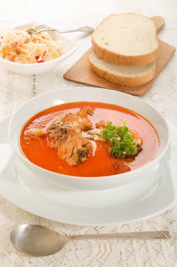 Σούπα κυπρίνων με την ξινή κρέμα σε ένα άσπρο πιάτο σούπας στοκ εικόνα με δικαίωμα ελεύθερης χρήσης