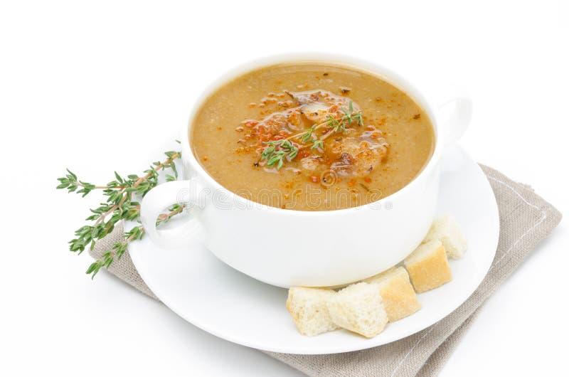 Σούπα μανιταριών σε ένα κύπελλο με croutons και θυμάρι που απομονώνεται στοκ εικόνα