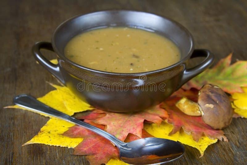 Σούπα μανιταριών στοκ εικόνα με δικαίωμα ελεύθερης χρήσης