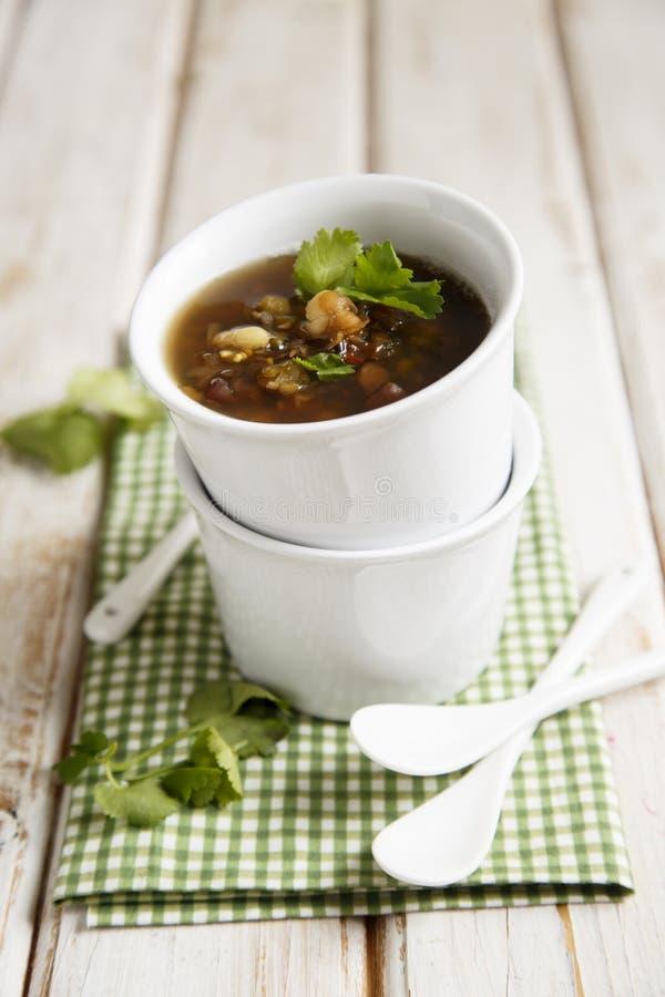 Σούπα μελιτζάνας στοκ φωτογραφία με δικαίωμα ελεύθερης χρήσης