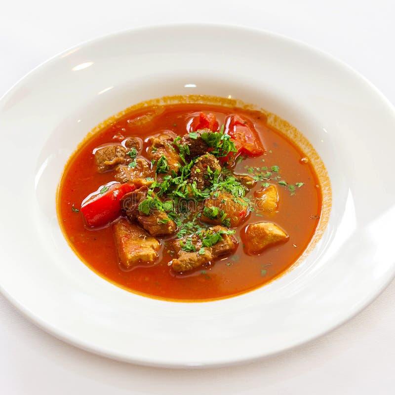 Σούπα με το πιπέρι και τα πράσινα κρέατος στοκ φωτογραφίες με δικαίωμα ελεύθερης χρήσης