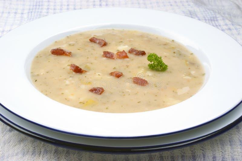 σούπα πατατών με μερικά χορτάρια στοκ εικόνα με δικαίωμα ελεύθερης χρήσης