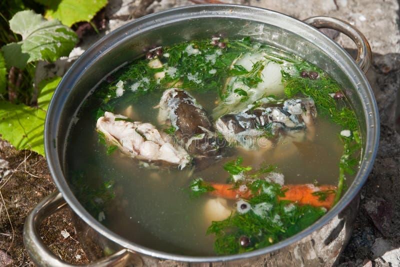 Σούπα που γίνεται από τον κυπρίνο στοκ εικόνες