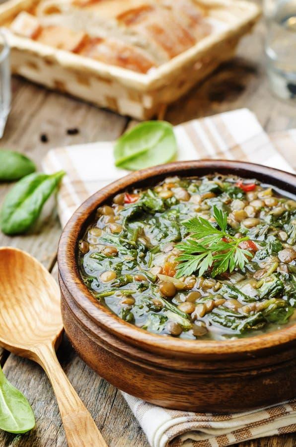 Σούπα σπανακιού φακών στοκ φωτογραφίες
