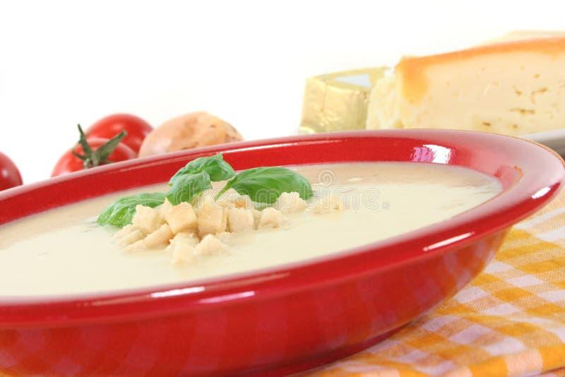 Σούπα τυριών στοκ εικόνες με δικαίωμα ελεύθερης χρήσης