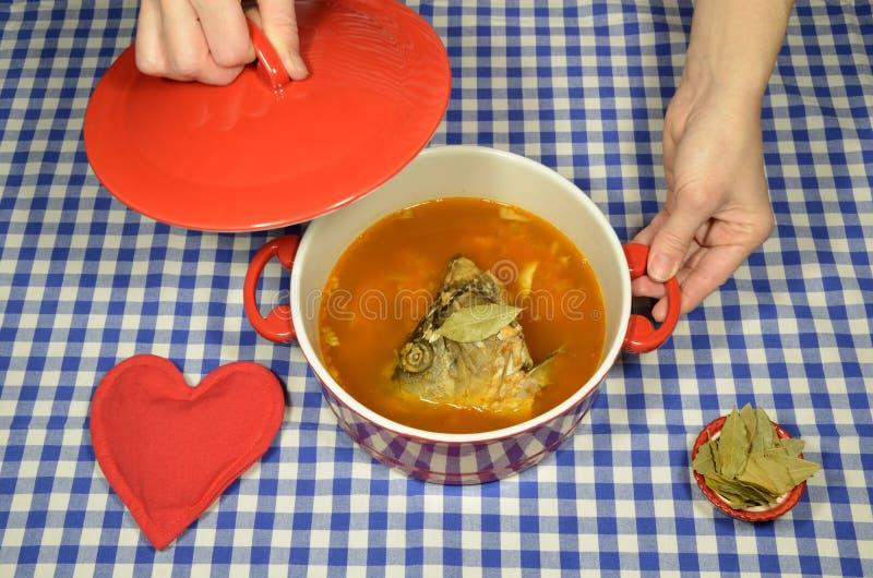 Σούπα ψαριών με τον κυπρίνο στοκ εικόνα με δικαίωμα ελεύθερης χρήσης
