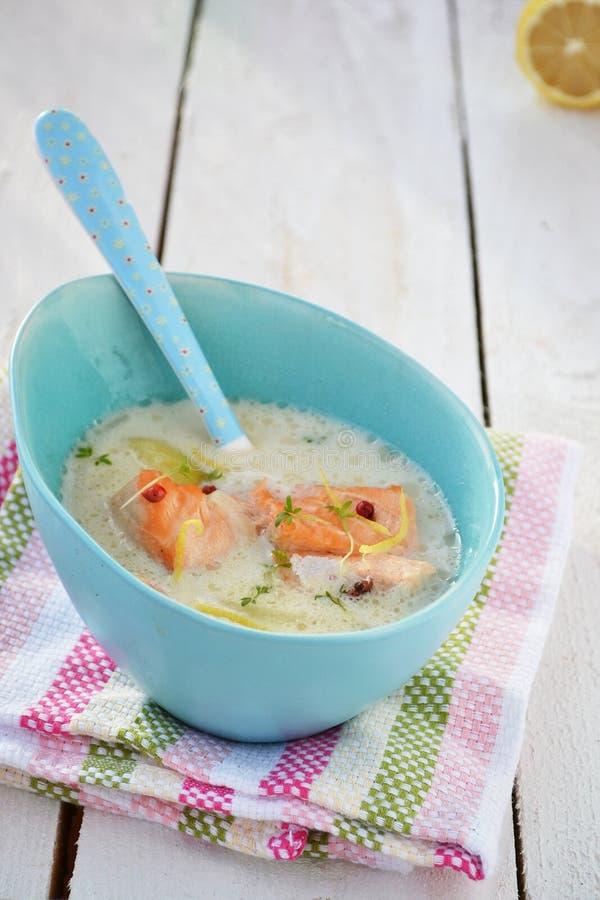 Σούπα ψαριών στοκ εικόνες με δικαίωμα ελεύθερης χρήσης