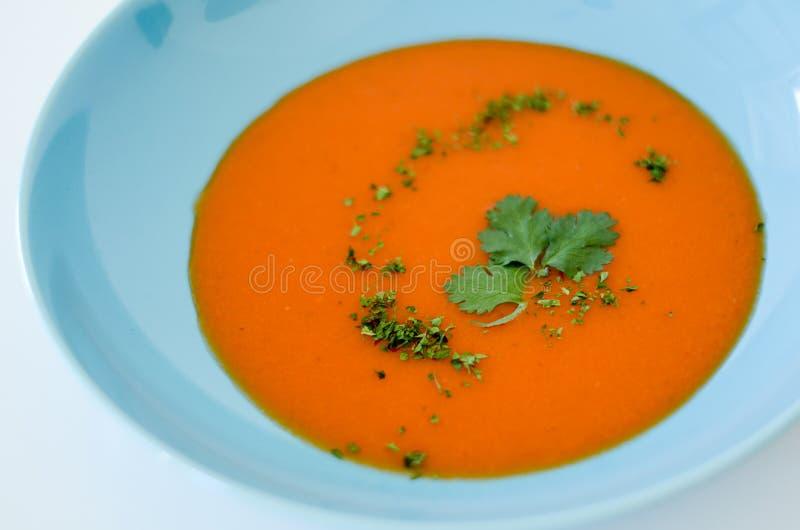 Σούπα στοκ εικόνα με δικαίωμα ελεύθερης χρήσης
