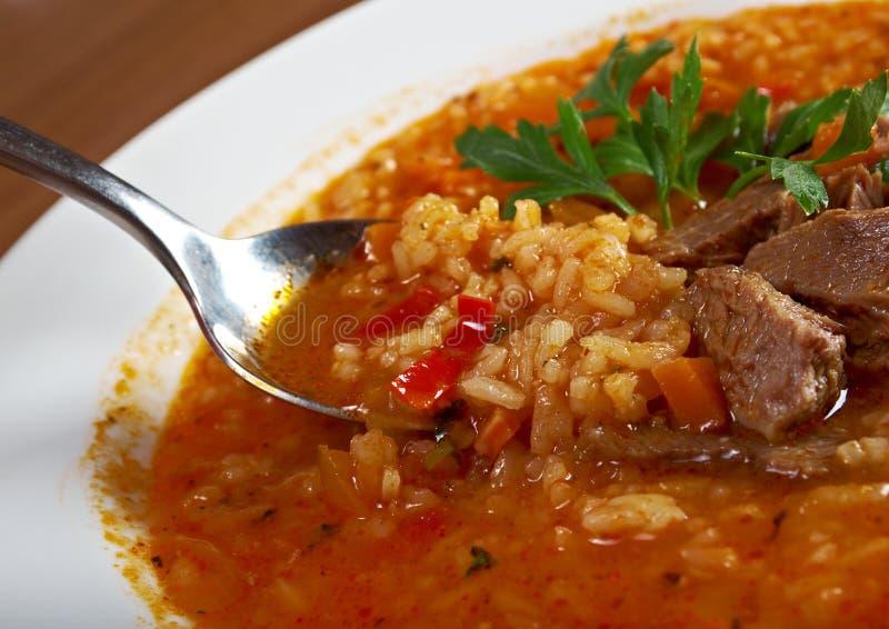Σούπα Kharcho στοκ εικόνα με δικαίωμα ελεύθερης χρήσης