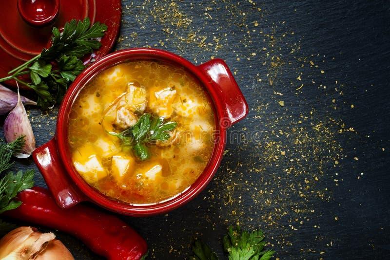 Σούπα Shurpa με το κρέας, τις πατάτες και τα λαχανικά, τοπ άποψη στοκ φωτογραφίες