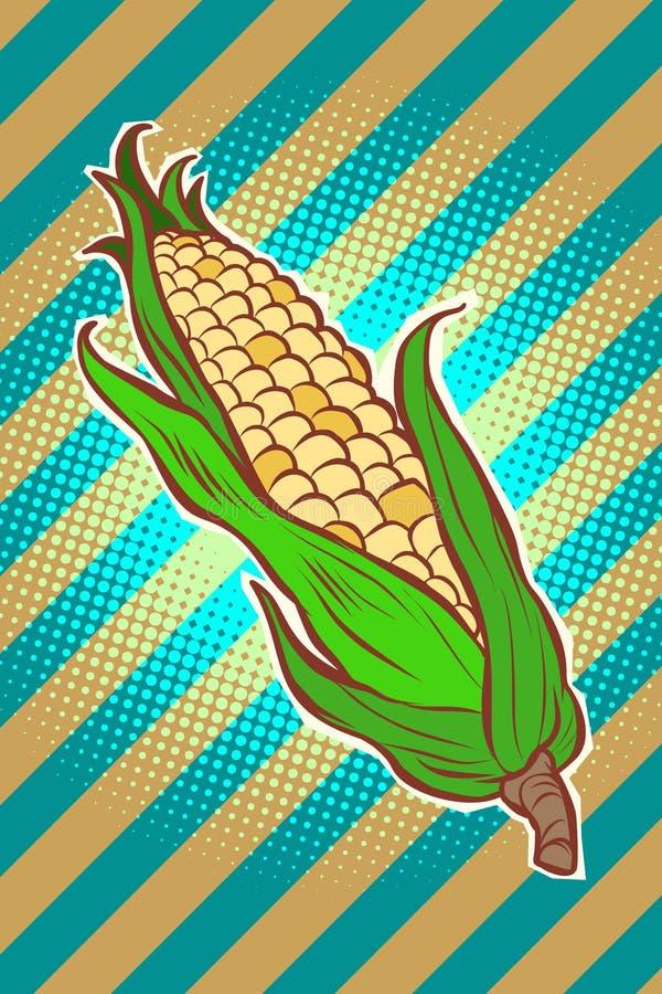 Σπάδικας αραβόσιτου καλαμποκιού ορεκτικό χορτοφάγο προϊόν ελεύθερη απεικόνιση δικαιώματος