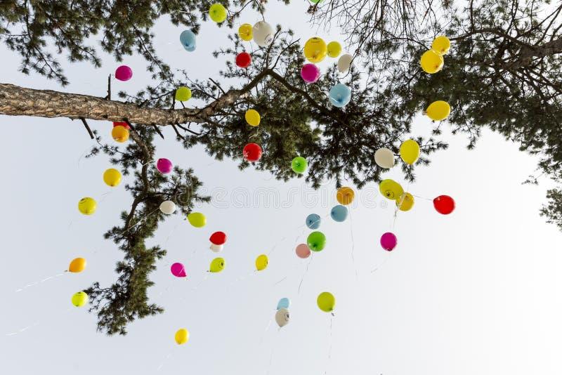 Σπάνια μπαλόνια ασθενειών στοκ εικόνες