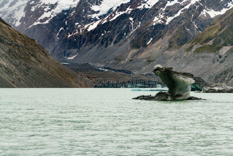 Σπάσιμο παγετώνων και πάγου αλεπούδων στο πάγωμα της λίμνης νερού στοκ εικόνα